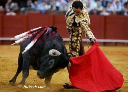 http://s3.amazonaws.com/rapgenius/1336951539_matador.bullfight.11.jpg