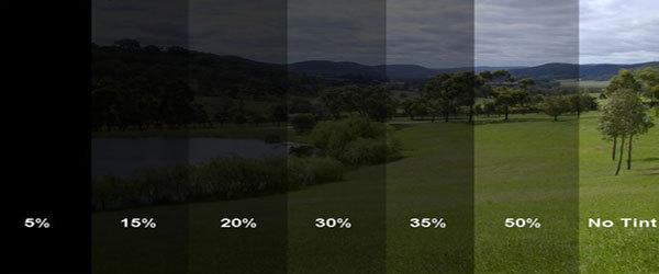 Windows 5 percent thuggin by wiz khalifa for 5 percent window tint