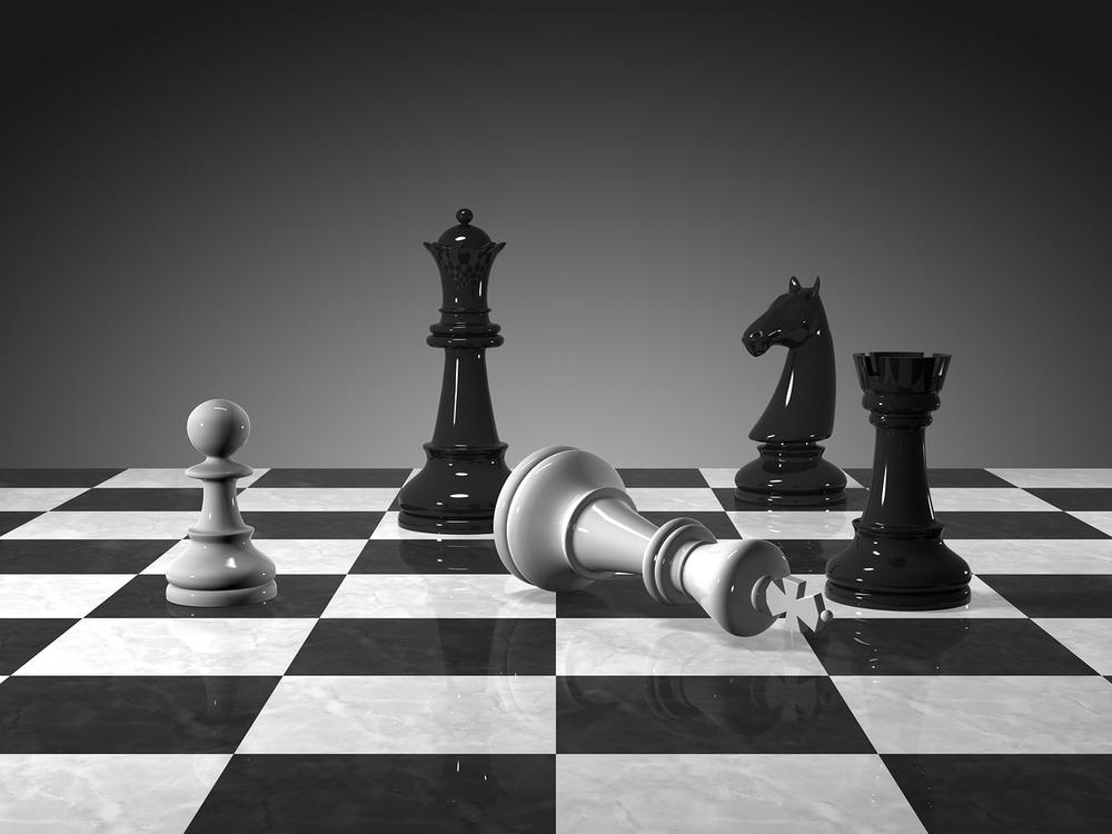 [Image: 1360813663_checkmate.jpg]