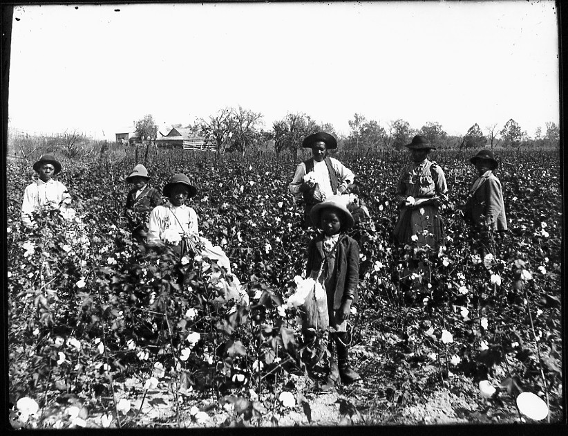 an introduction to the issue of slaves the history of african americans in the united states For native americans and africans, american history  see also slavery in the united states:introduction  these changes made african slaves a.