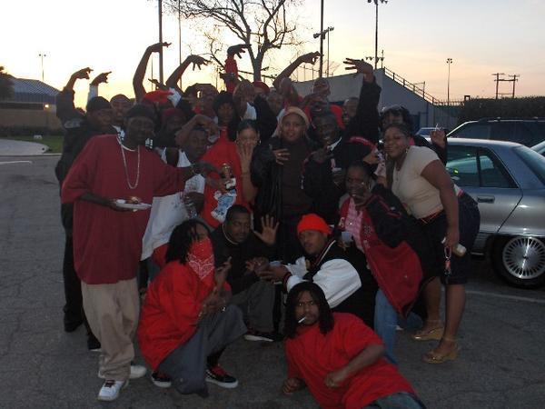 bloods sets in los angeles county pirus brims - 600×450