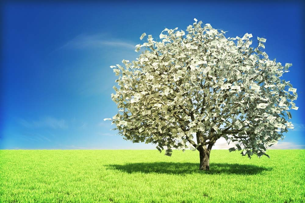 an interpretation of the money tree Money tree (myth) from wikipedia, the free encyclopedia this article needs additional citations for verification please help improve this article by.