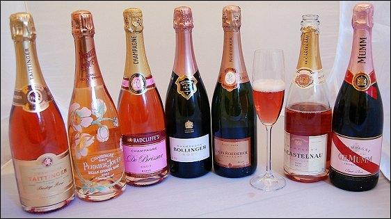 Champagne Pink Pop Rose