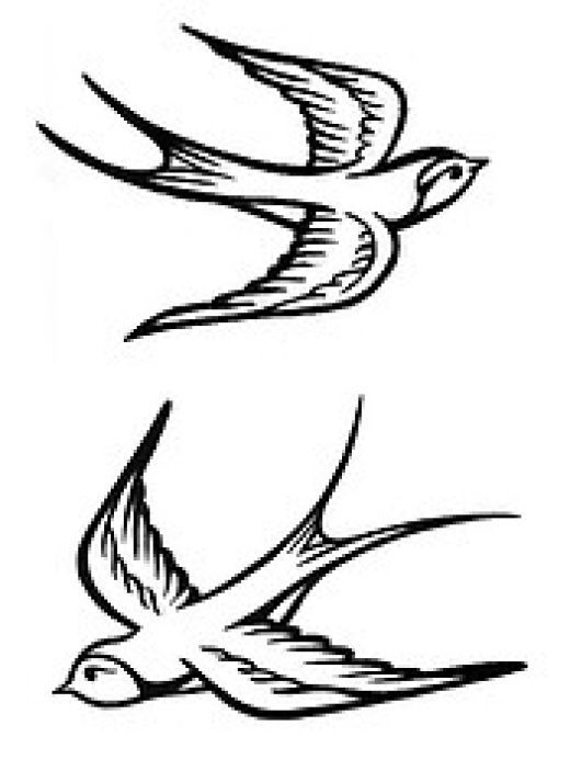 Simple sparrow drawings - photo#3