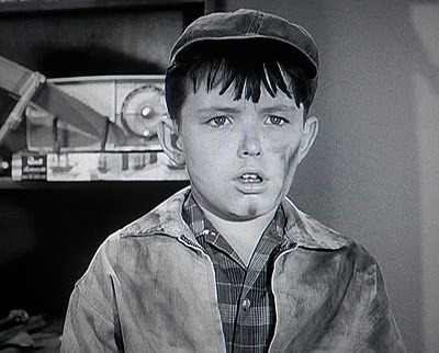 leave it to beaver vs the Leave it to beaver is an american television sitcom about an inquisitive and often naïve boy, theodore the beaver cleaver (portrayed by jerry mathers), .