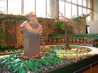 James May's plasticine Garden (FestivalHall)