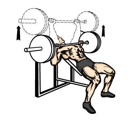 Incline Bench Press Machine Youtube to The Incline Bench Press