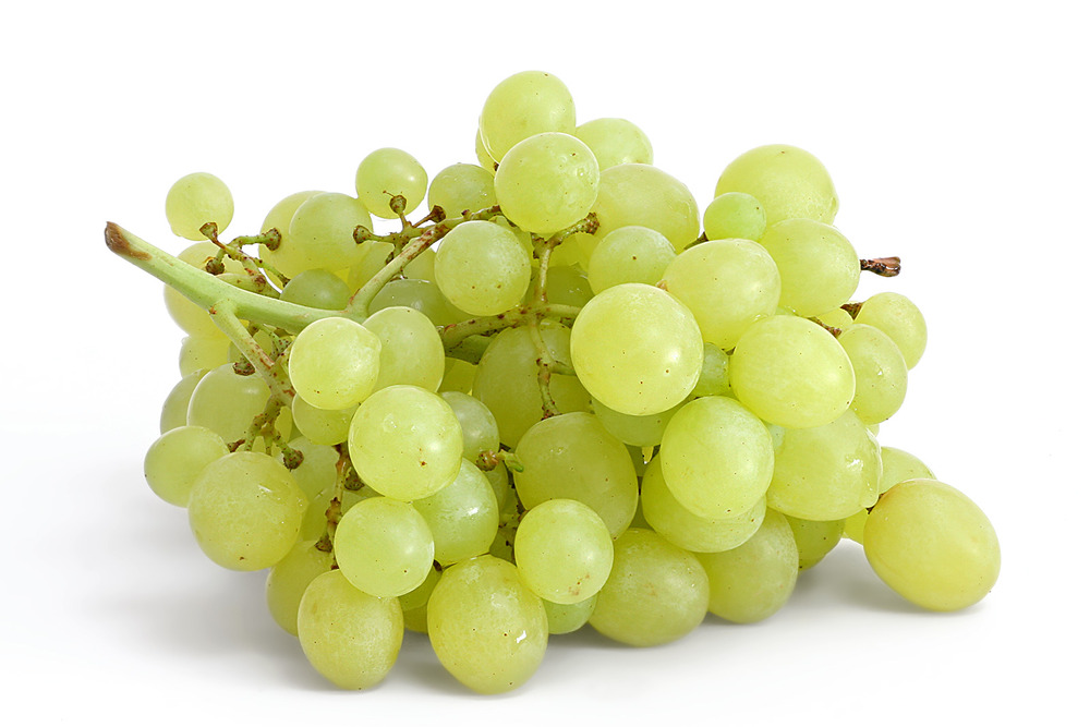 Table_grapes_on_white.jpg