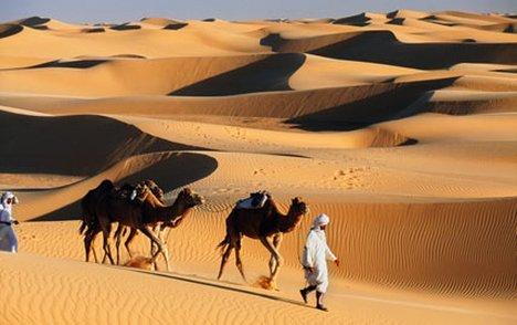http://s3.amazonaws.com/rapgenius/desert1101_428x269_to_468x312.jpg