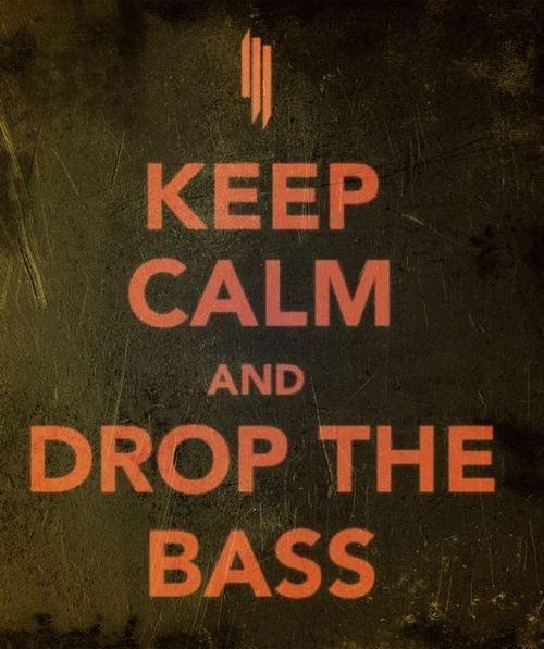 Skrillex - Cinema (drop the bass) lyrics - YouTube
