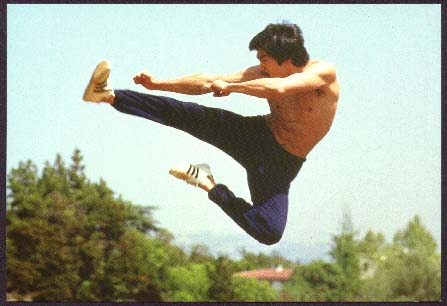 We the reason Bruce Lee learnt - 20.5KB