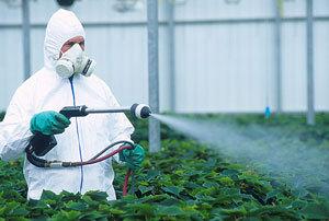 Le génie génétique en agriculture (vidéo)