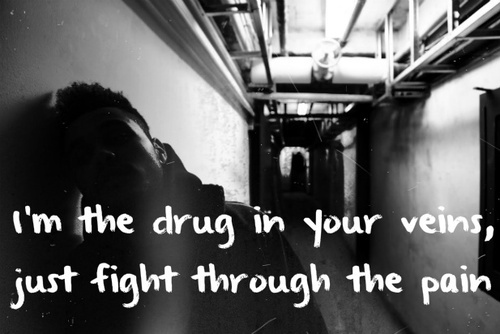 how to help fight the war on drugs