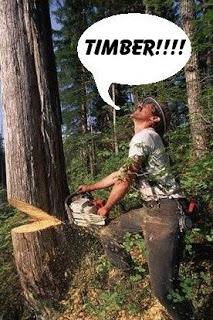 http://s3.amazonaws.com/rapgenius/wpOg5B3bQTOD6LxhaHYD_lumberjack2.jpg