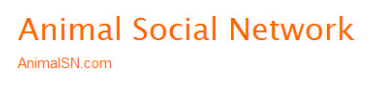 the ultimate list of niche social networks raven blog