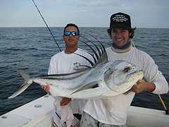 It doesn't take long to find out why roosterfish fishing is so exciting. / Matt Maiello