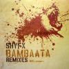 picture of Bambaata Remixes