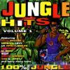 picture of Jungle Hits - Volume 1
