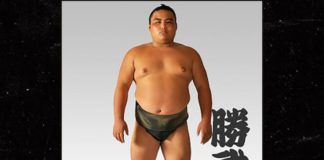 Shobushi, sumo wrestler from Japan that died of Covid-19 at 28
