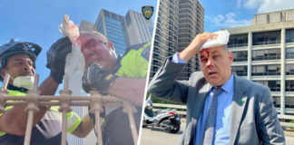 NYPD cops attacked at Brooklyn Bridge by protesters