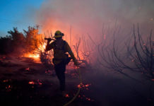 A firefighter walls over burning embers from the Bobcat Fire in Juniper Hills, CaliforniaAFP via Getty Images