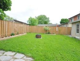 29_backyard