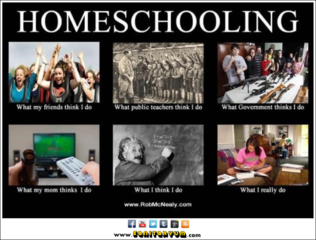 What-i-do-meme-homeschooling
