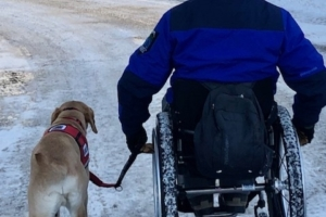 When anniversaries come in the form of spinal cord injuries and service dogs
