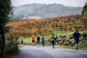 Sign up for the Wine Country Half Marathon and 10k with Team Reeve!