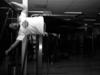 Small_vital_fitness_en_sportschool_delft_calisthenics_vlag_edited1