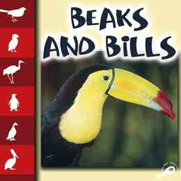 Beaks and Bills