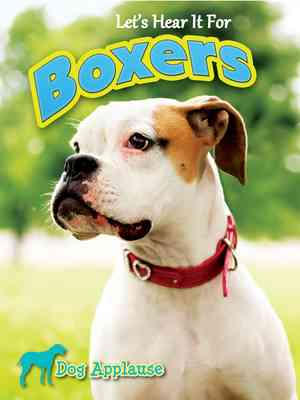 Let's Hear It For Boxers
