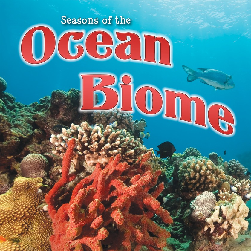 Ocean Biome Drawing Seasons of The Ocean Biome