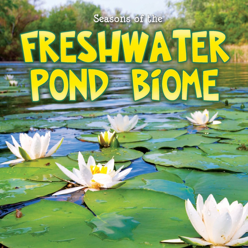 Ocean Biome Drawing The Freshwater Pond Biome