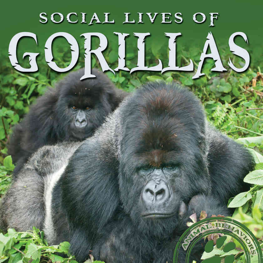 Social Lives of Gorillas