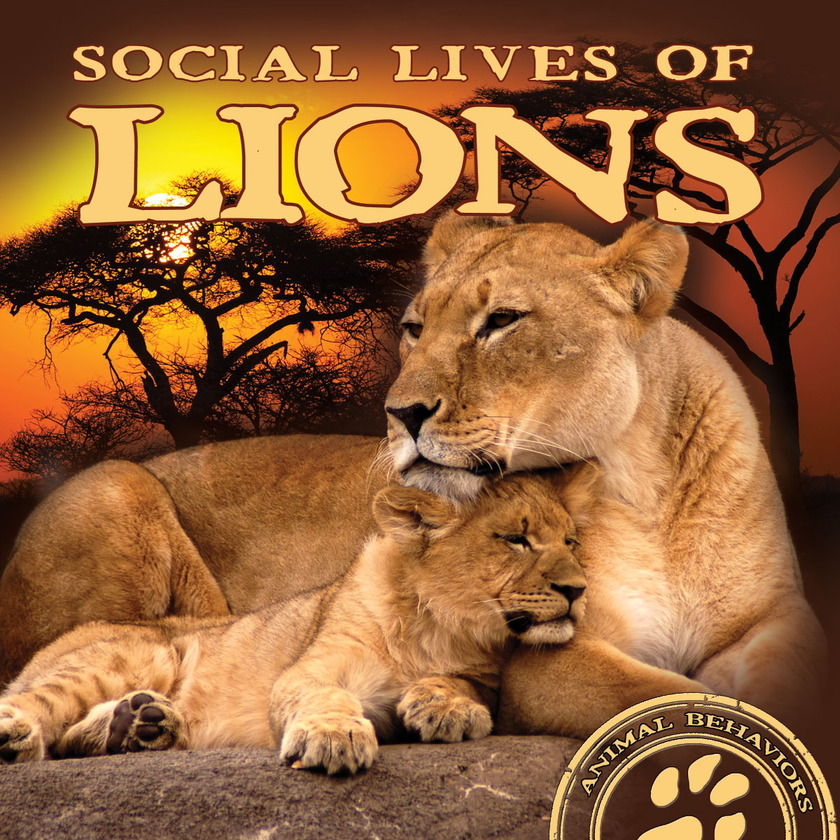 Social Lives of Lions
