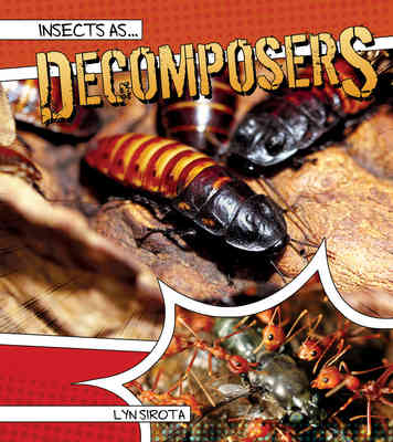Insects as Decomposers
