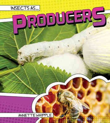Insects as Producers