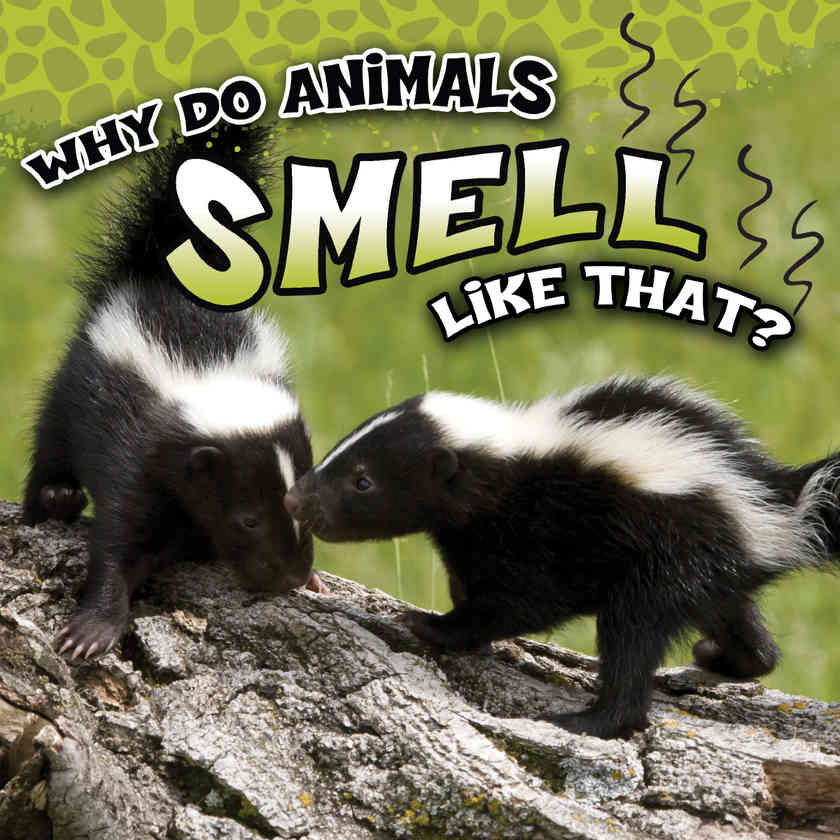 Why Do Animals Smell Like That?