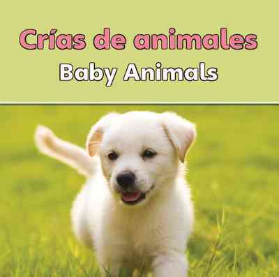 Crias De Animales  (Baby Animals)