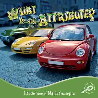 What Is An Attribute?