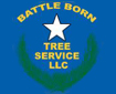 Website for Battle Born Tree Service, LLC