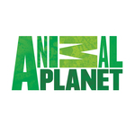 Animal-planet-logo