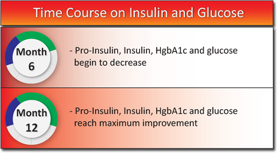 Time Course on Insulin and Glucose