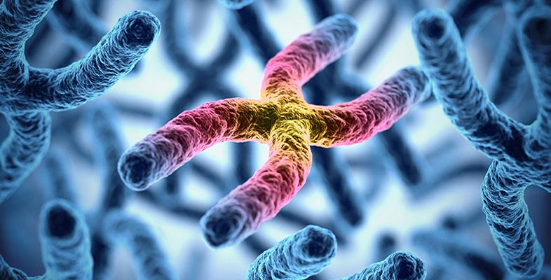telomeres-testing-renue-health