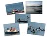 New_boat_rental_thumb