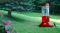 Hummingbird_400x250_thumb