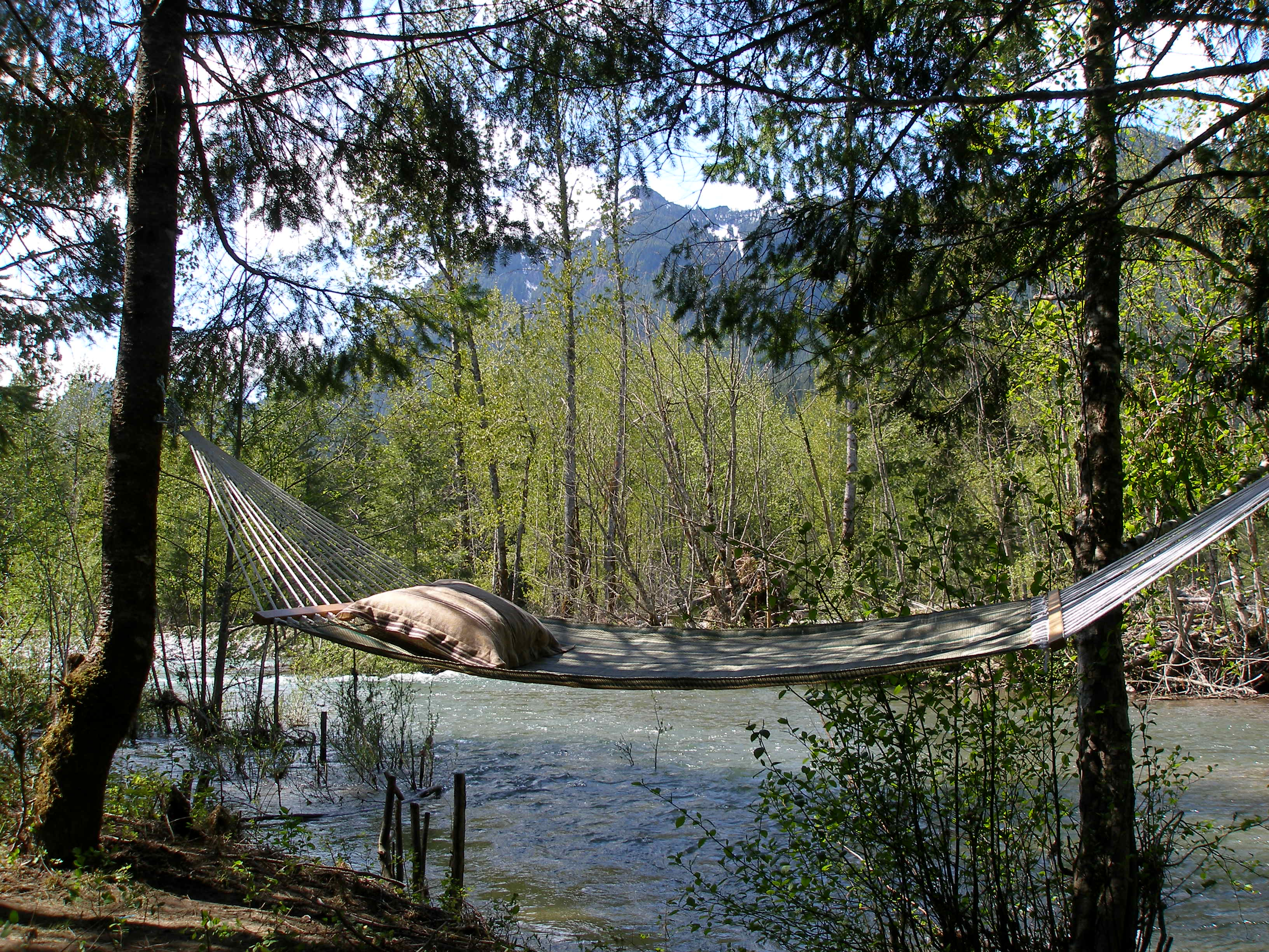 Hammock_by_the_river_thumb