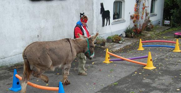 Ada und Esel by Judith Schmidt in Belgien