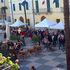 Festa di San Martino 2015